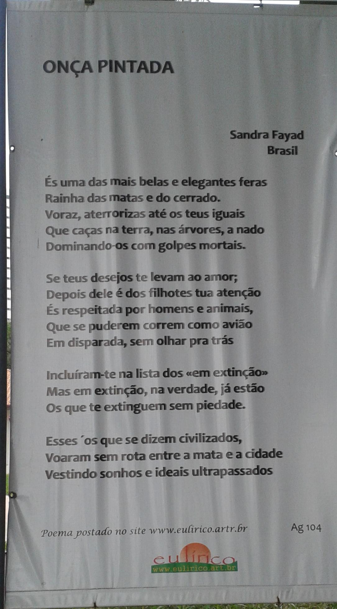 Amor Voraz file:Águas claras, brasília - df, brazil - panoramio (29