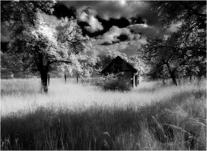 Fileblack and white photo made with infrared photography jpg