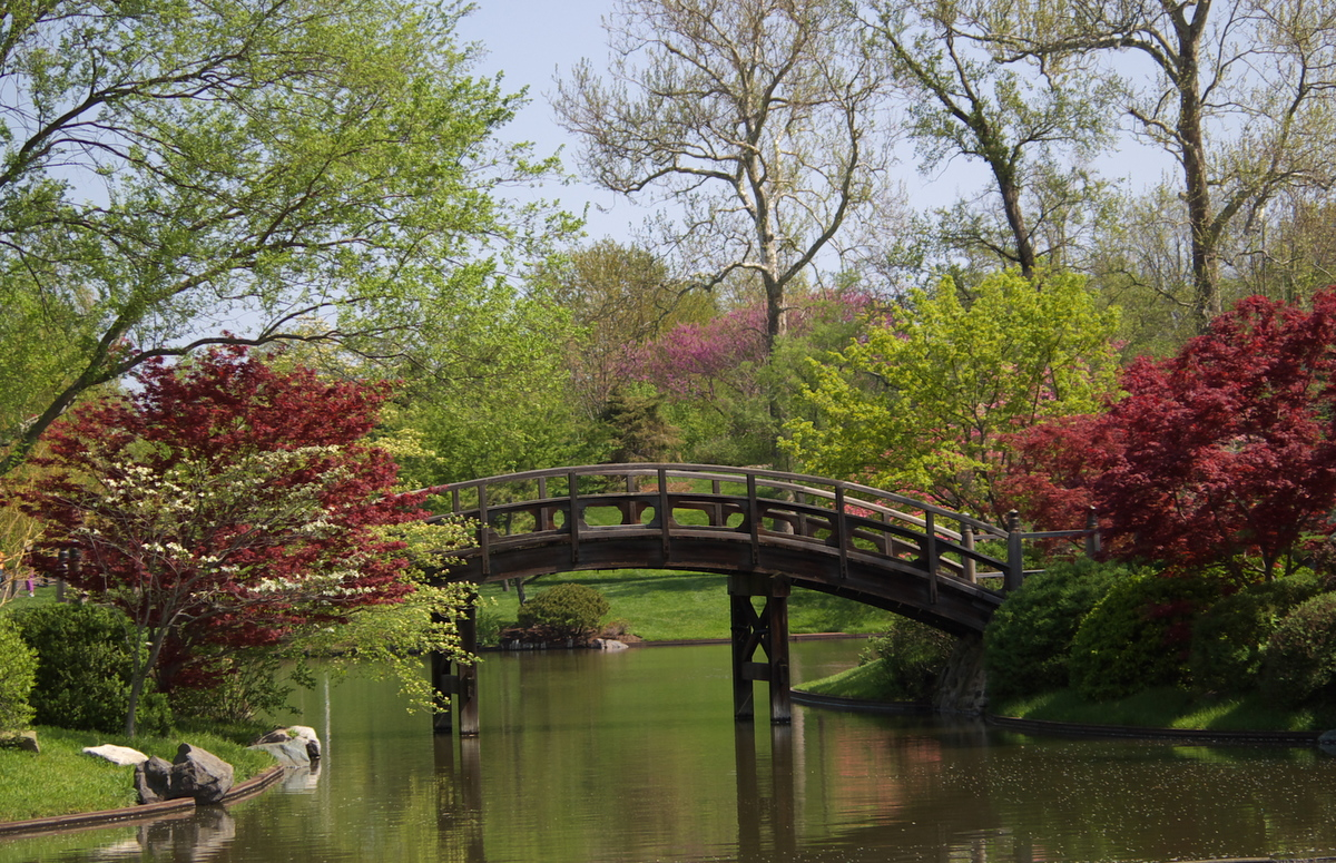 File botanical garden saint wikimedia commons - Missouri botanical garden st louis mo ...