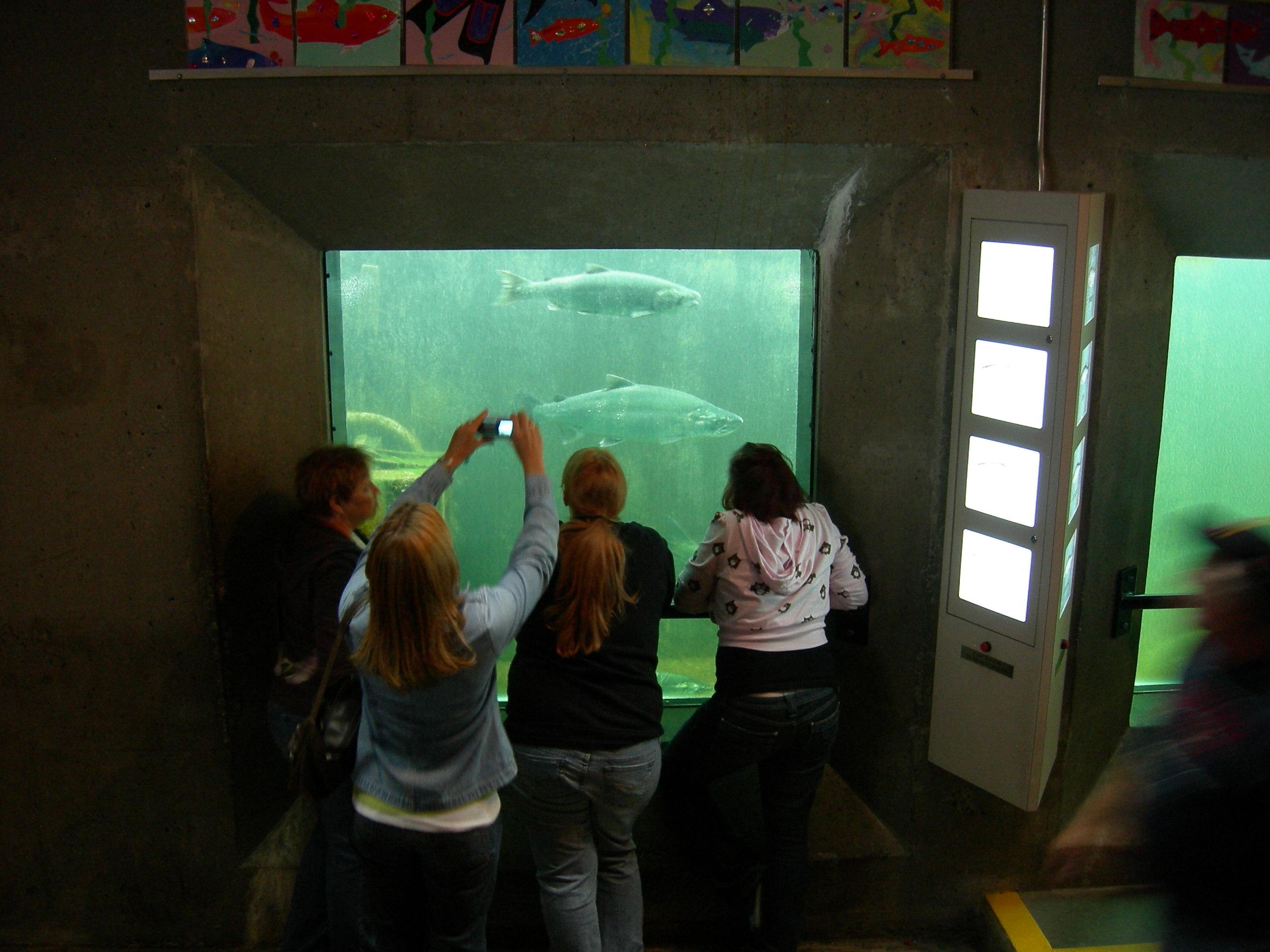 Raw Fish Room Temperature