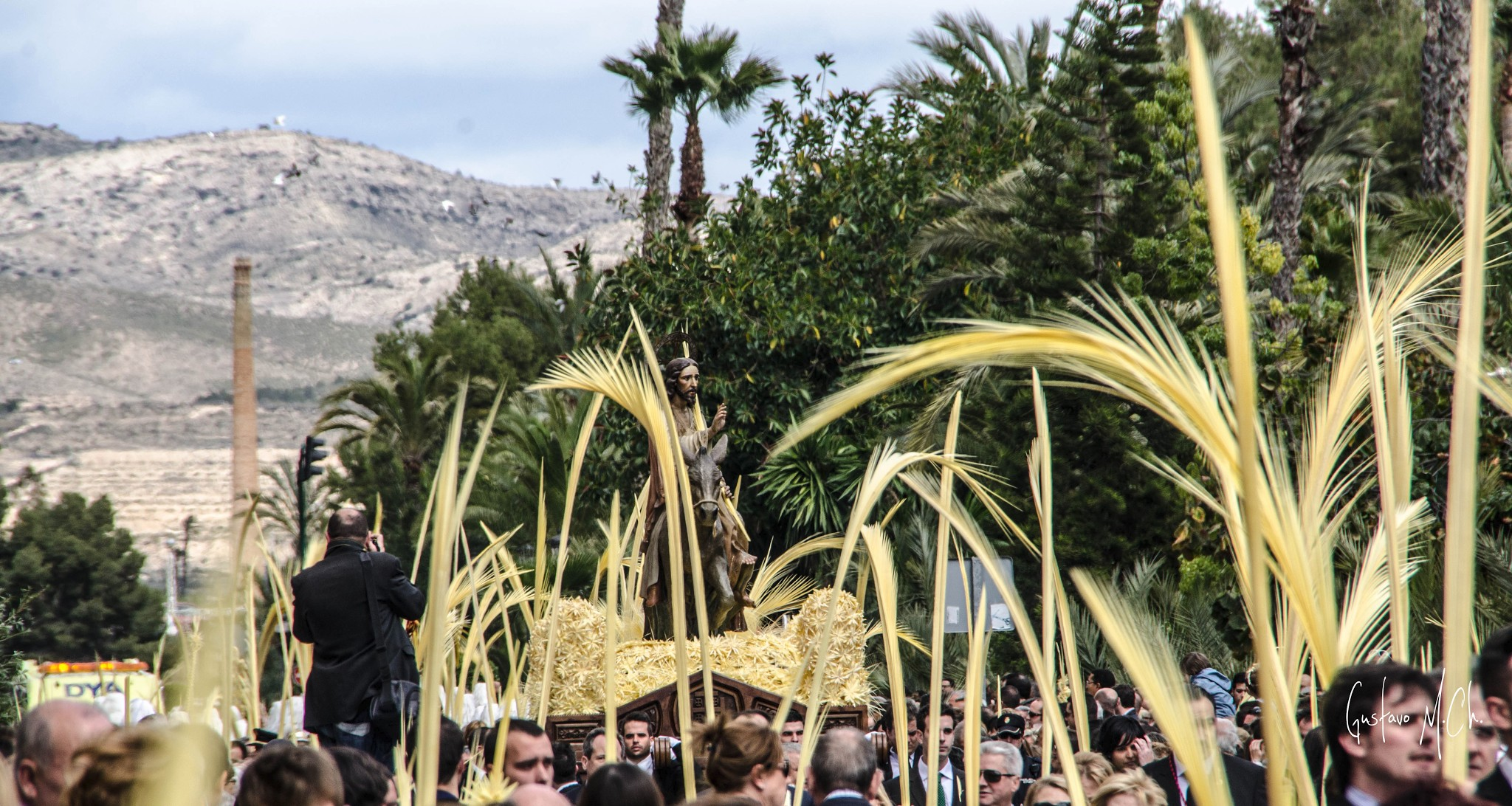 Image result for easter palms