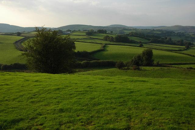 Farmland around Llwyn-celyn - geograph.org.uk - 980011
