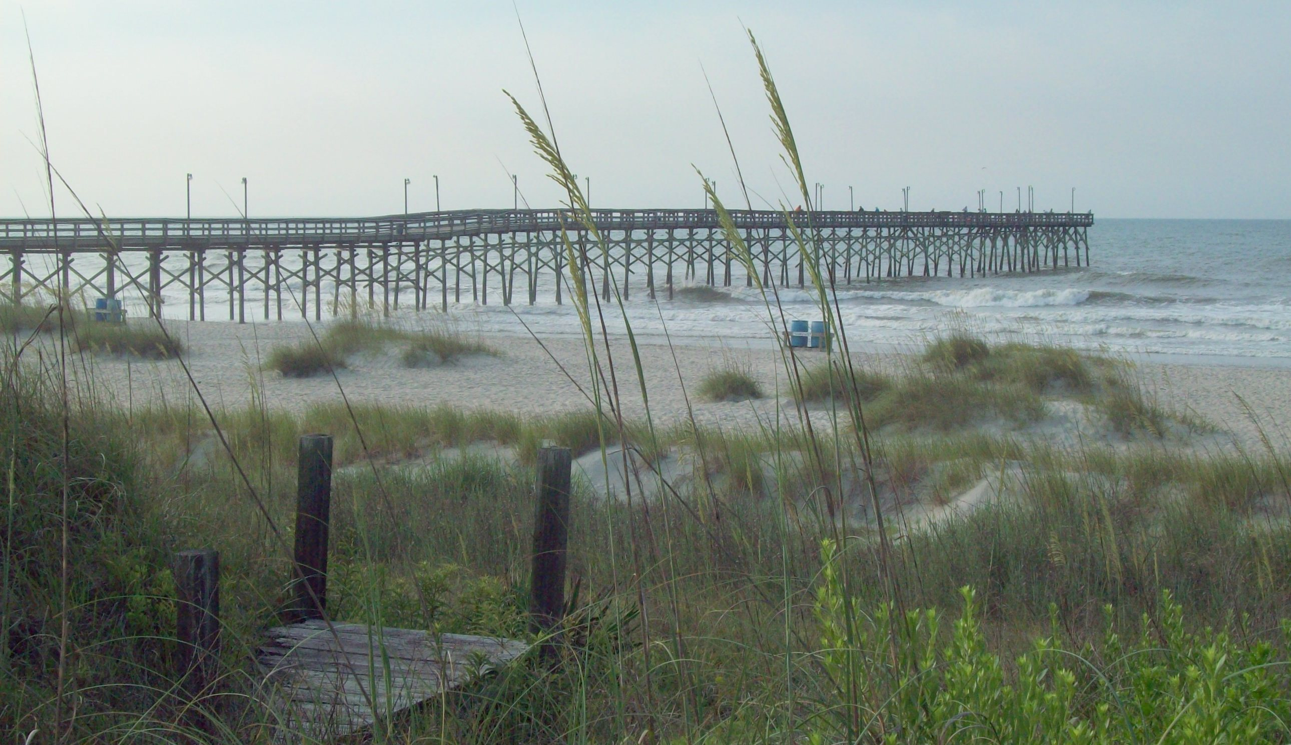Top 5 shark fishing destinations in america liveoutdoors for Best fishing in nc