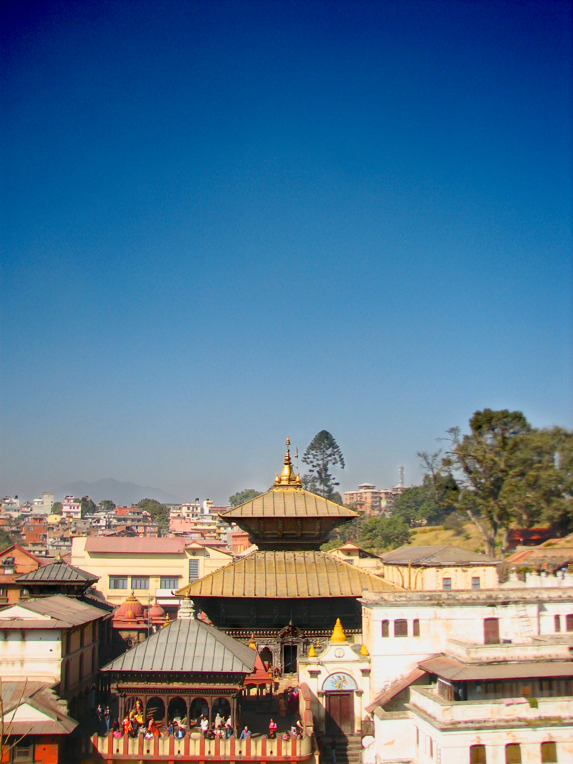 pashupatinath temple free - photo #14