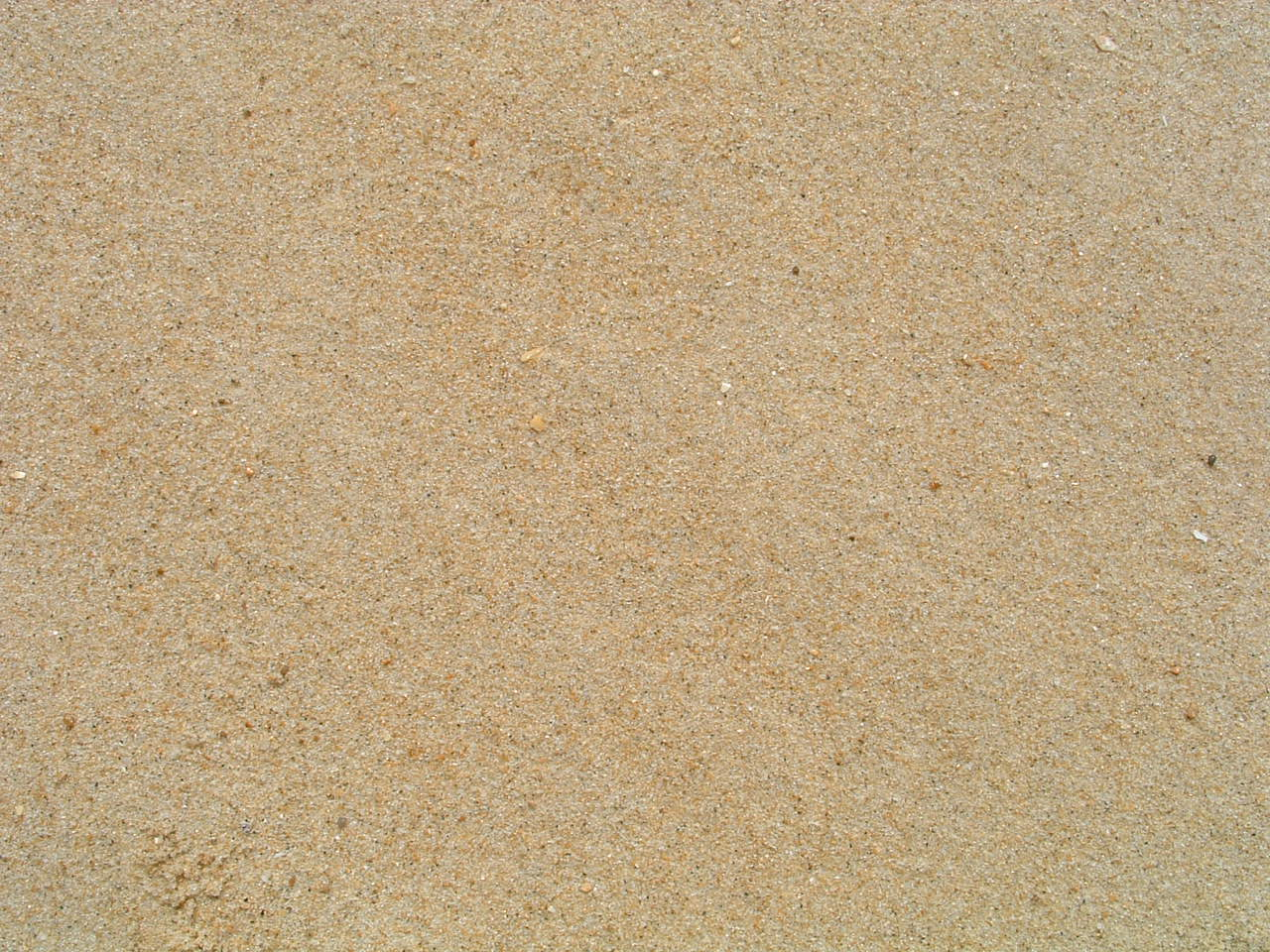 File Sand Jpg Wikimedia Commons