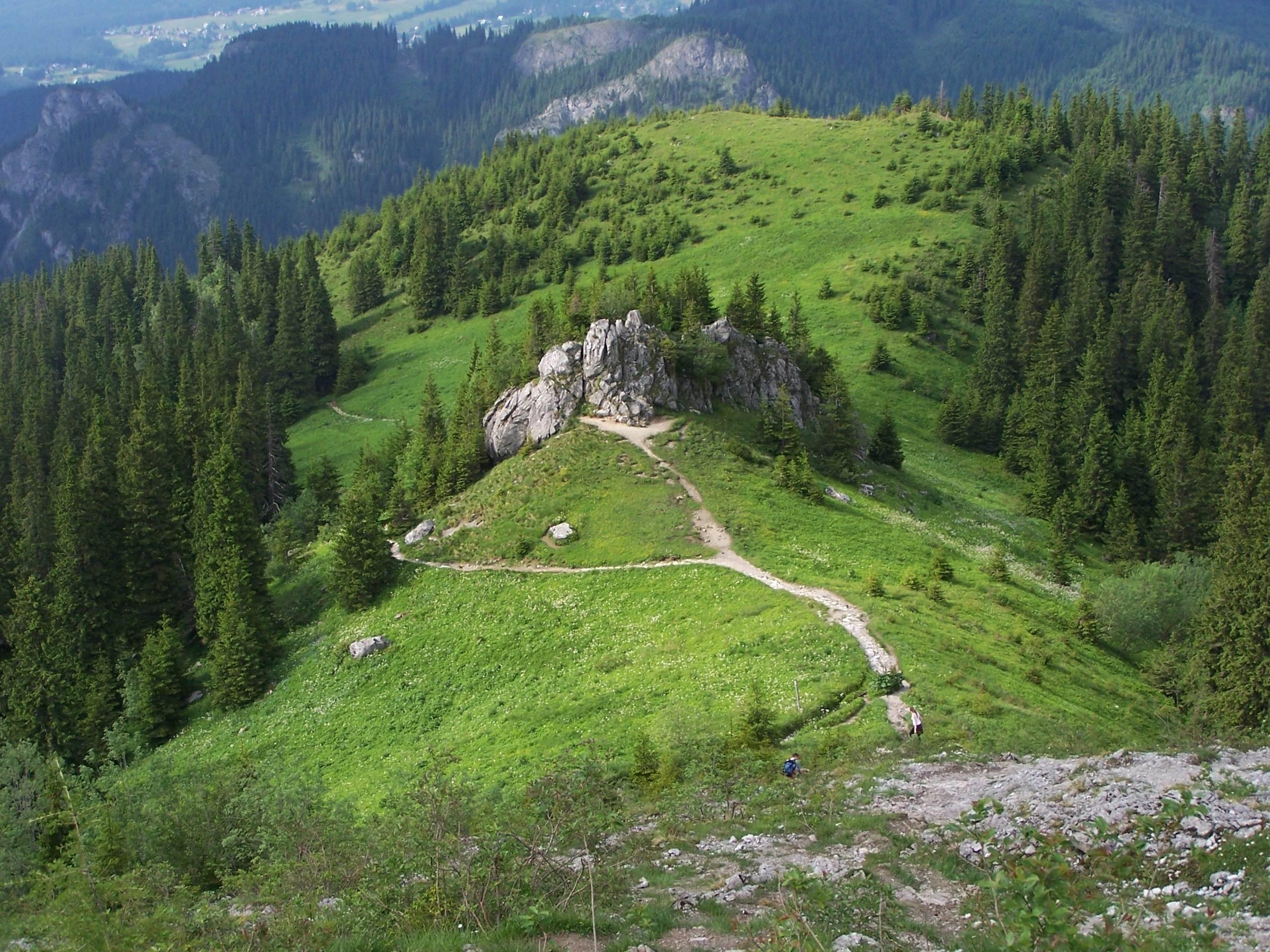Wyżnia Upłazińska Rówień ze skałą Piec (Wikimedia)