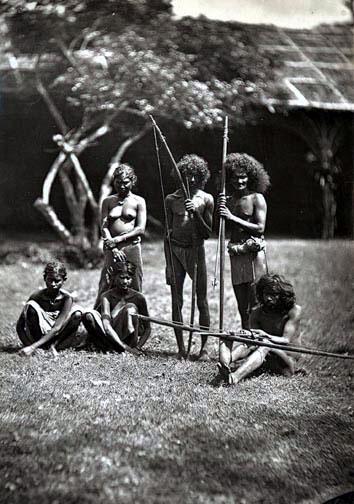 Sri Lanka aborigines vedda at work