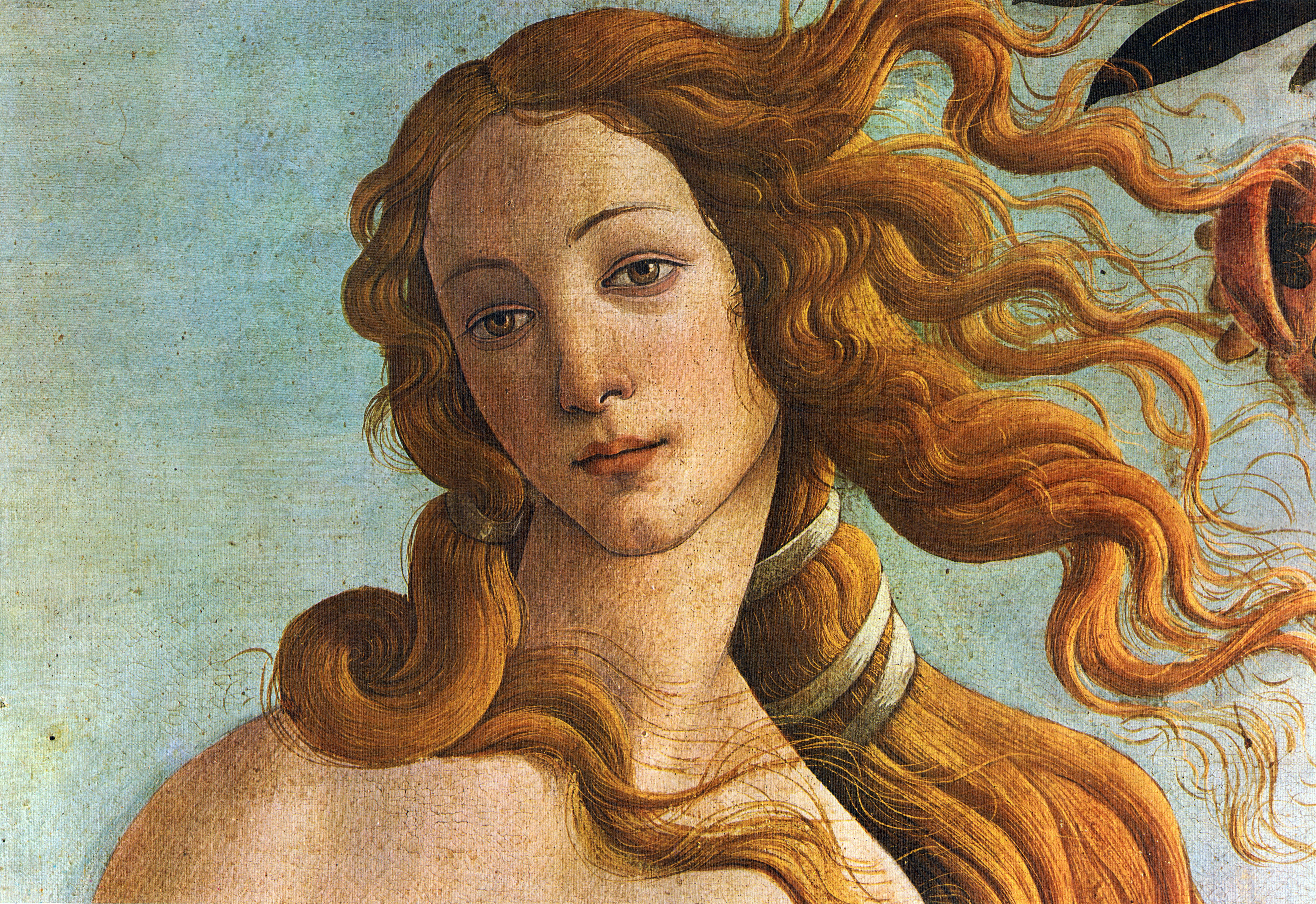 File:The Birth of Venus (Botticelli - 16809.0KB