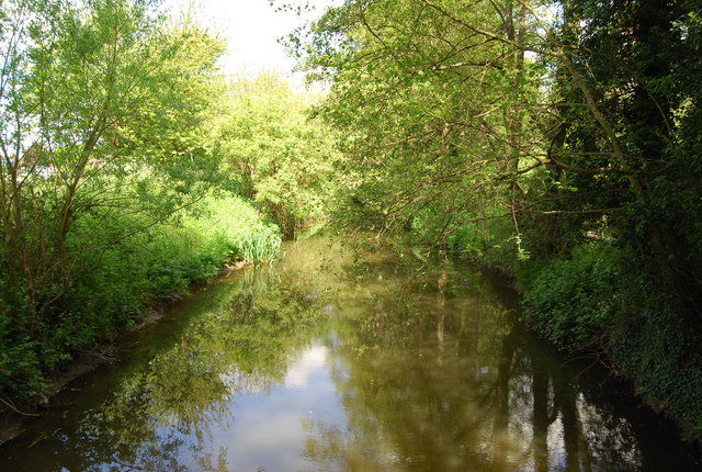 The River Arun, Horsham - geograph.org.uk - 1291742