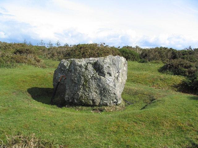 The Whetstone, Hergest Ridge - geograph.org.uk - 438143