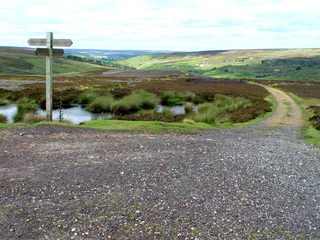 Towards Westerdale Moor and Eskdale - geograph.org.uk - 895166