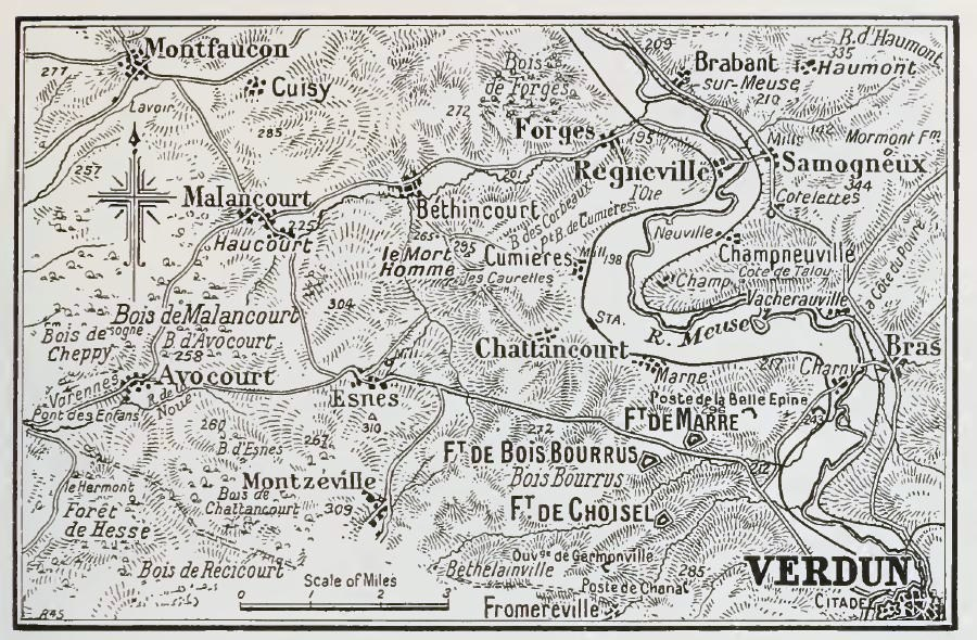 Battle of verdun military wiki