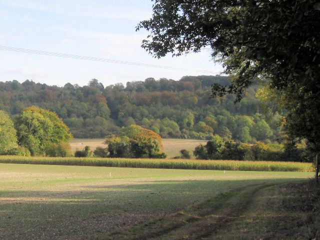 A view of the Chiltern Hills