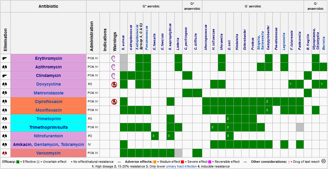 File antibiotic chart 1 png wikimedia commons