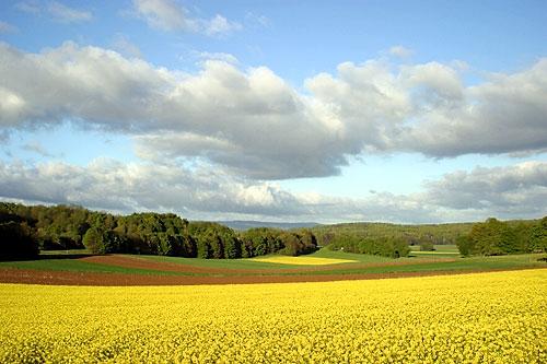 Arquivo: Bure Landschaft.jpg