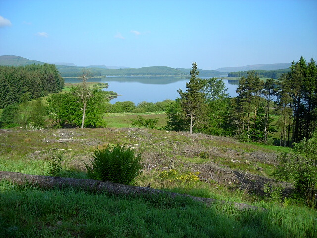 Carron Valley Forest and Reservoir - geograph.org.uk - 462266