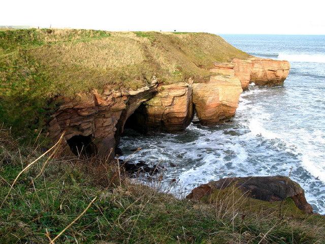 Cliffs from Berwickshire Coastal path - geograph.org.uk - 323939