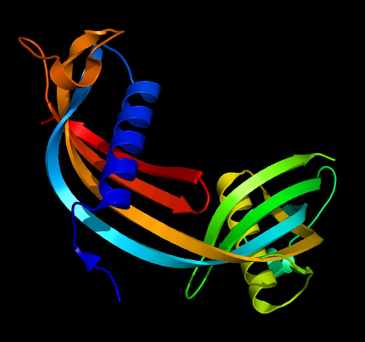 Kystatiini C
