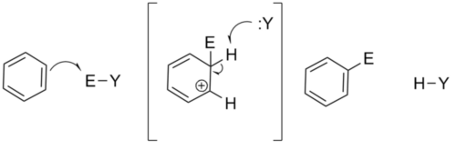 Basic Mechanism of Electrophilic Aromatic Substitution