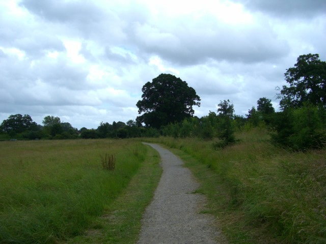 Entrance track, Southwick Country Park - geograph.org.uk - 877588