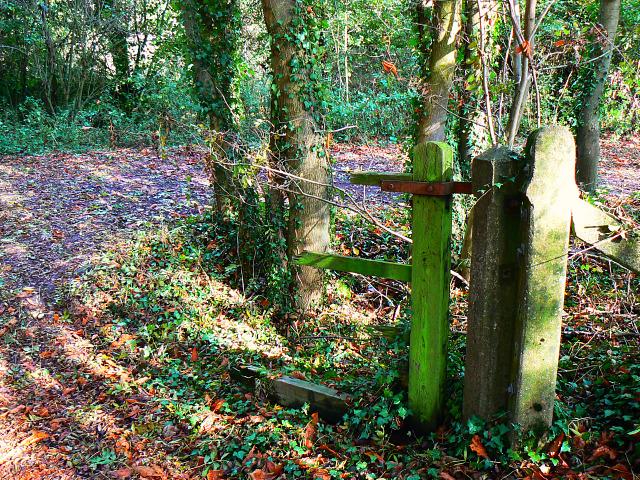 Gate remnants, Stanton Park, Swindon - geograph.org.uk - 1526543