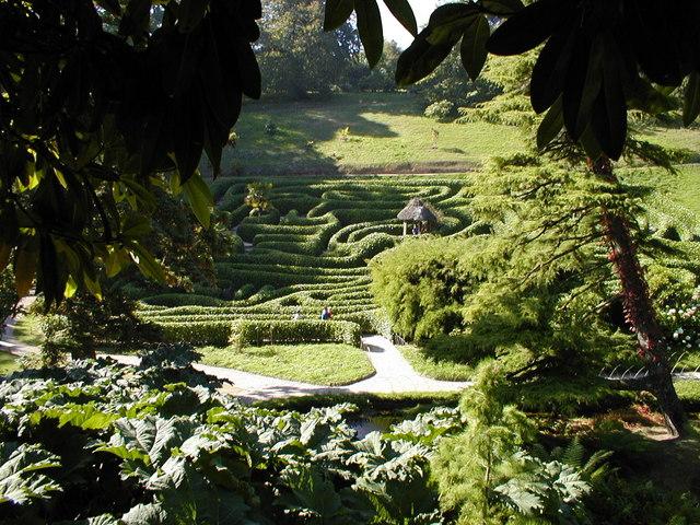 Glendurgan Garden, The Maze - geograph.org.uk - 224932