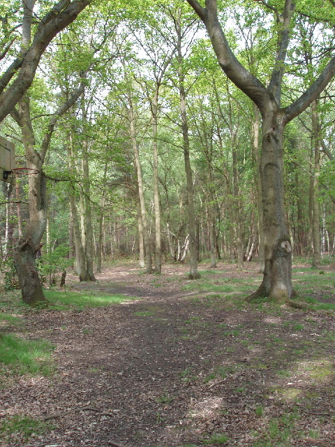 horsell common wikipedia