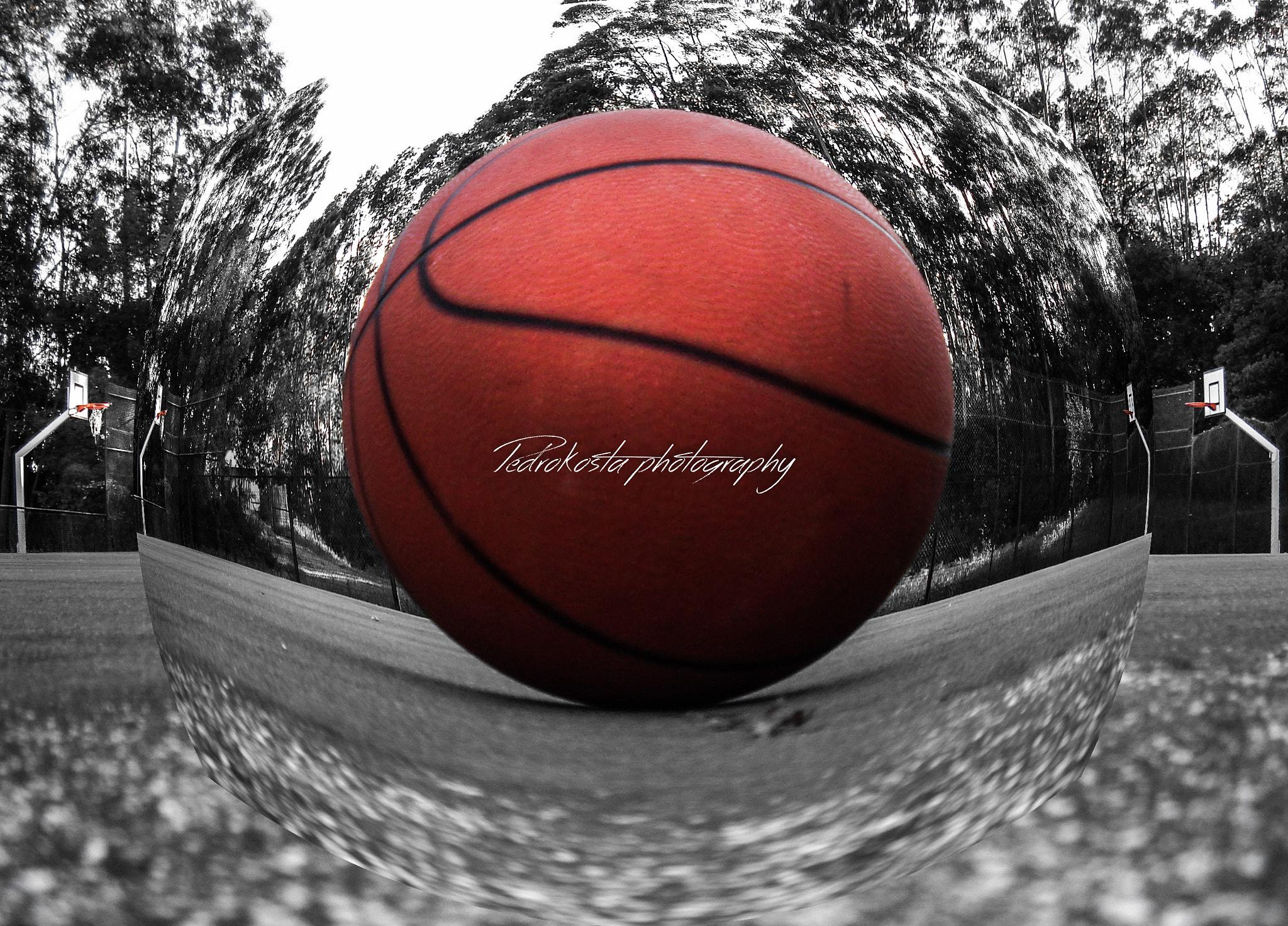 mimpi main bola basket togel