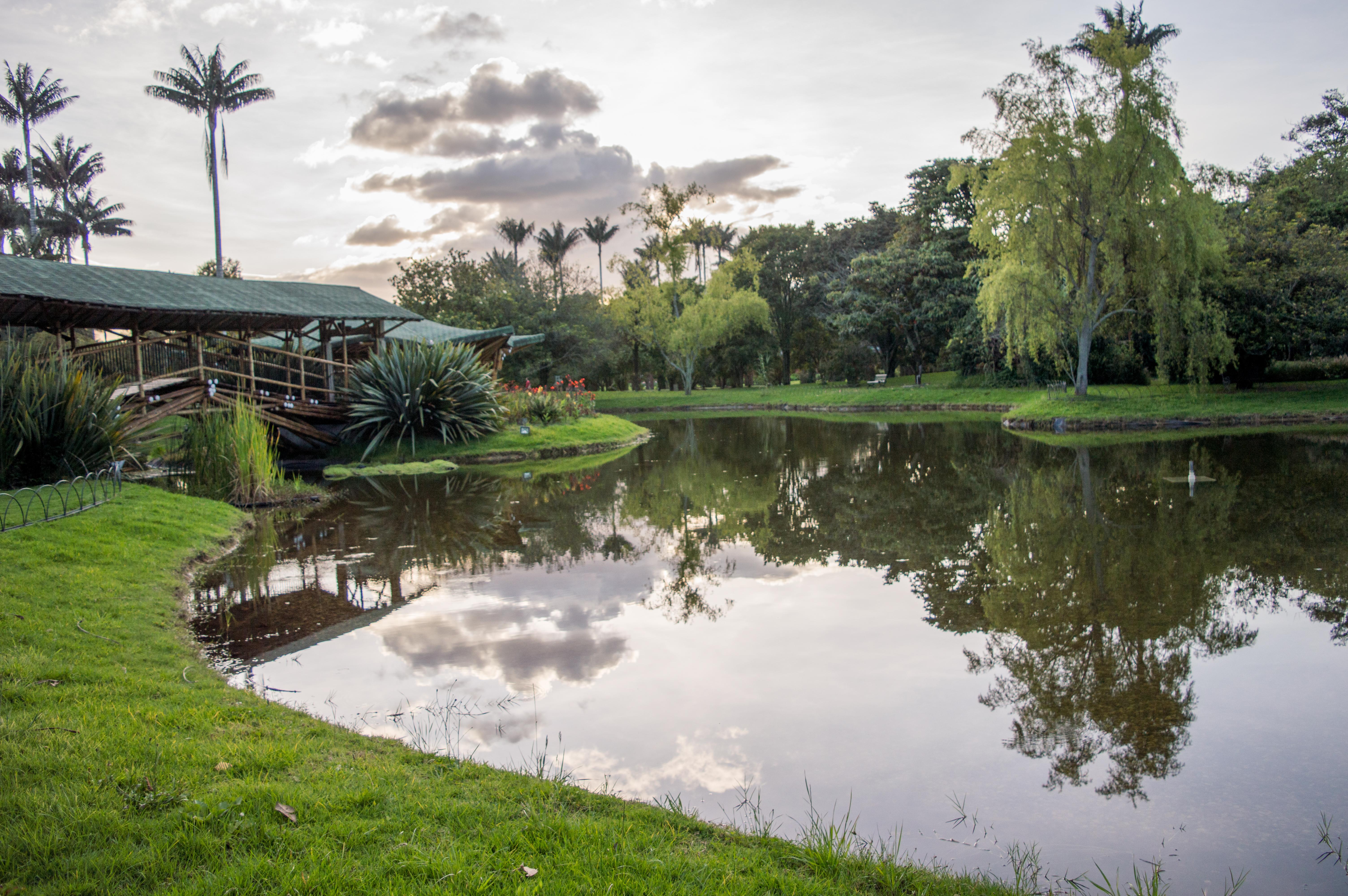 File:Jardín Botanico José Celestino Mutis.jpg - Wikimedia Commons