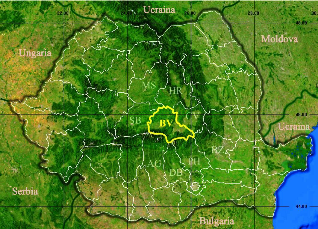 Brasov Fylke Wikipedia