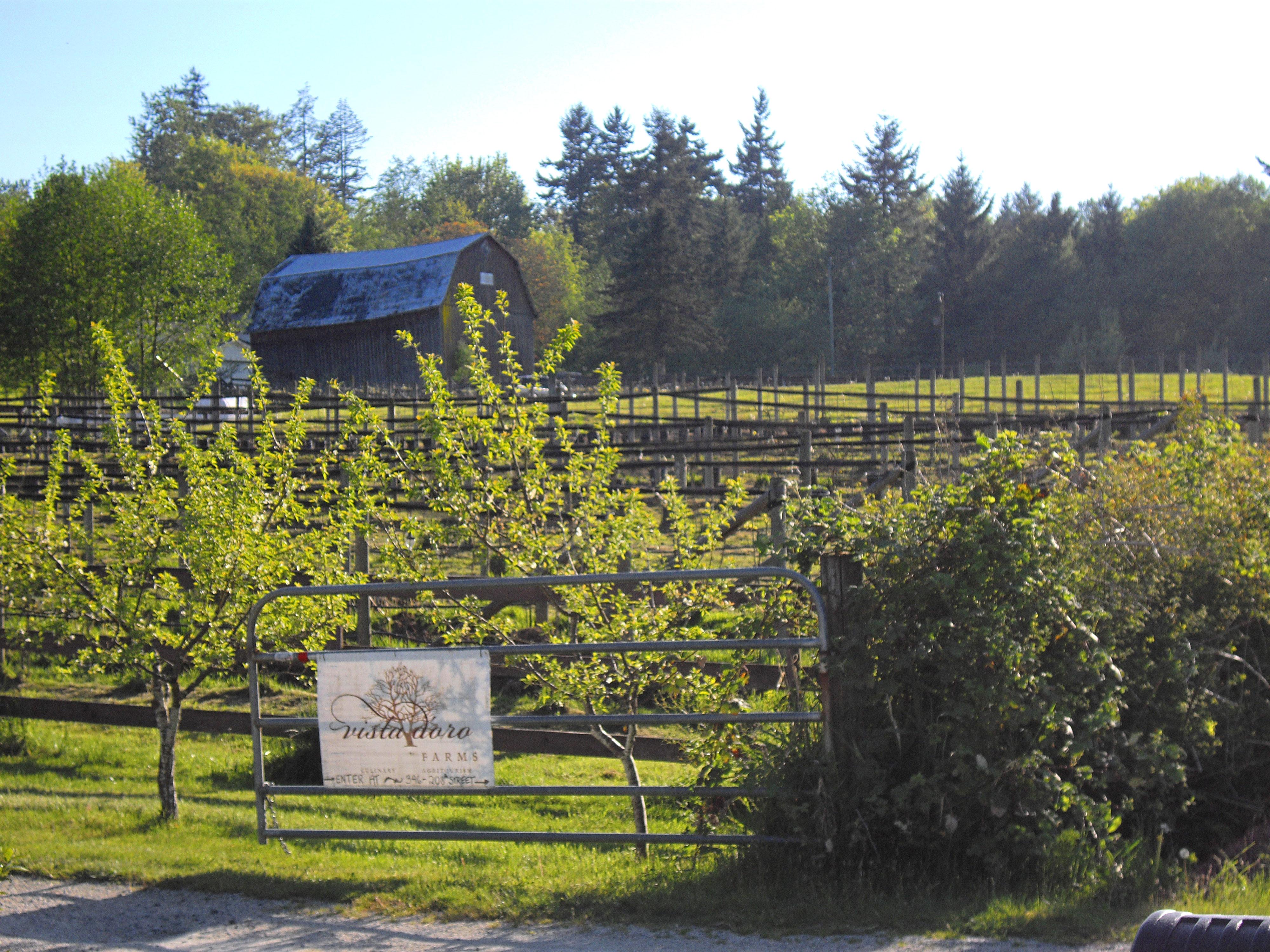 A farm in Langley