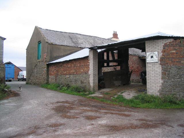 Port Chester Dog Park