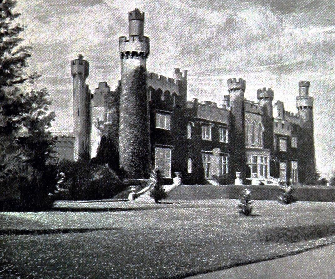 luttrellstown castle wikipedia