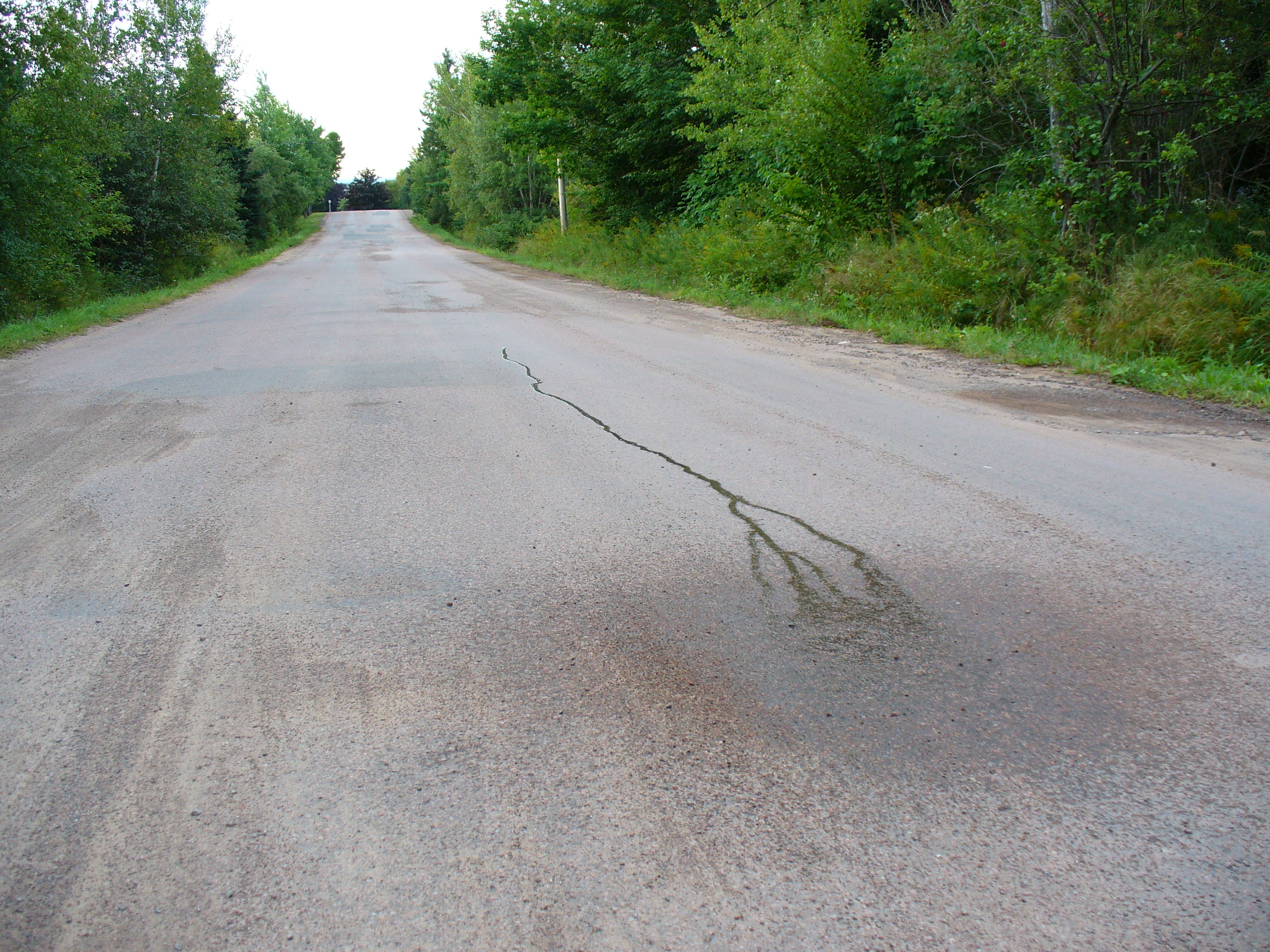 What If Two Roads Are Illusion What If >> Magnetic Hill Moncton Wikipedia