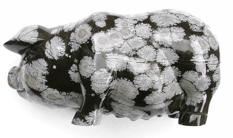 Pig.snowobsidian