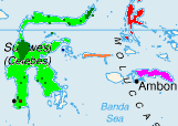 Rattus Sulawesi & Moluccas.PNG