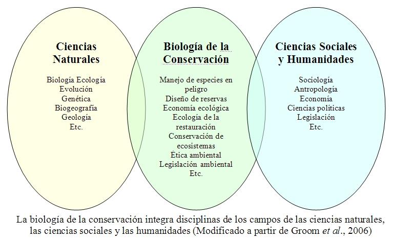 Ecologia definicion yahoo dating