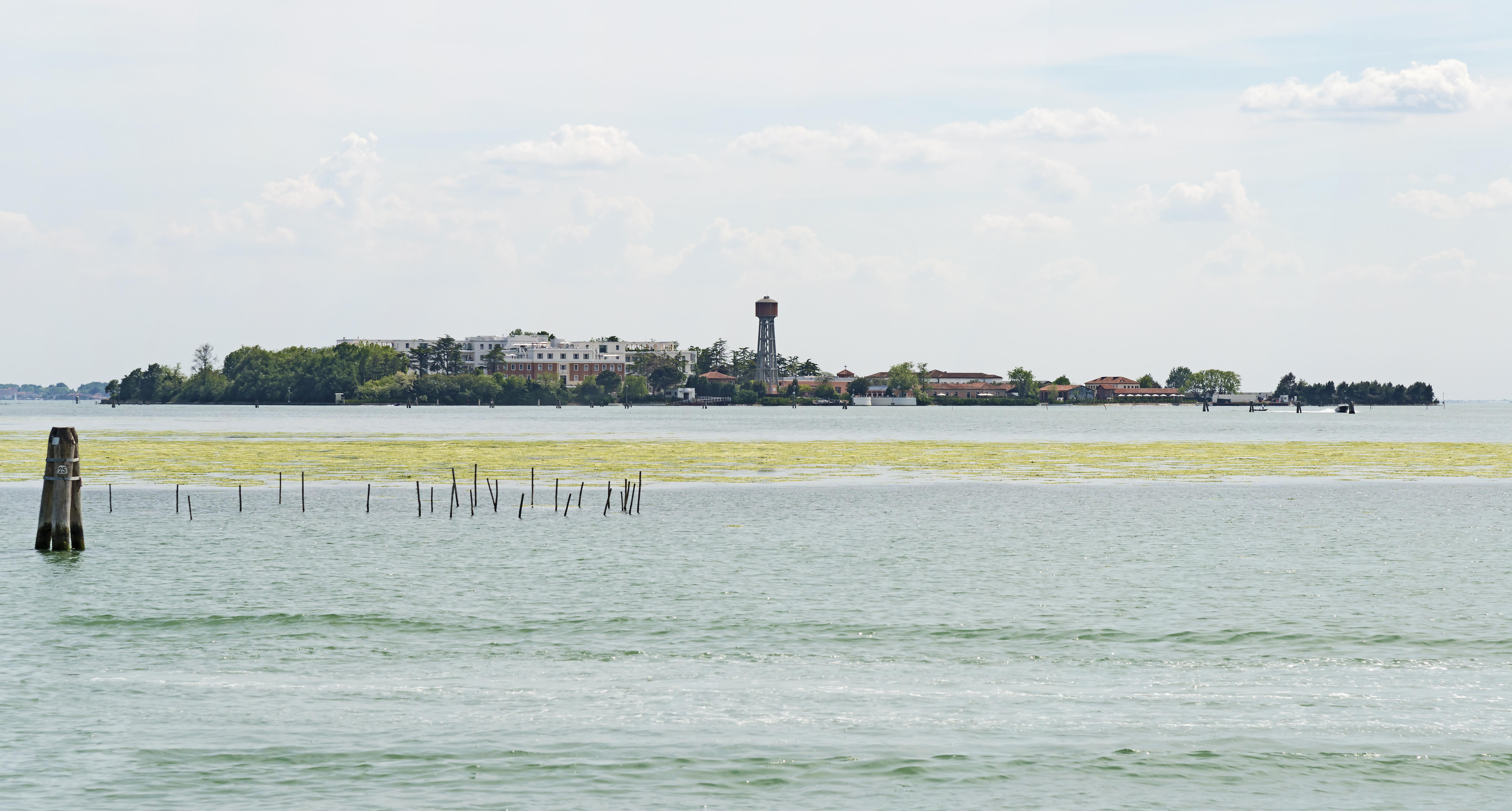 薩卡塞索拉島