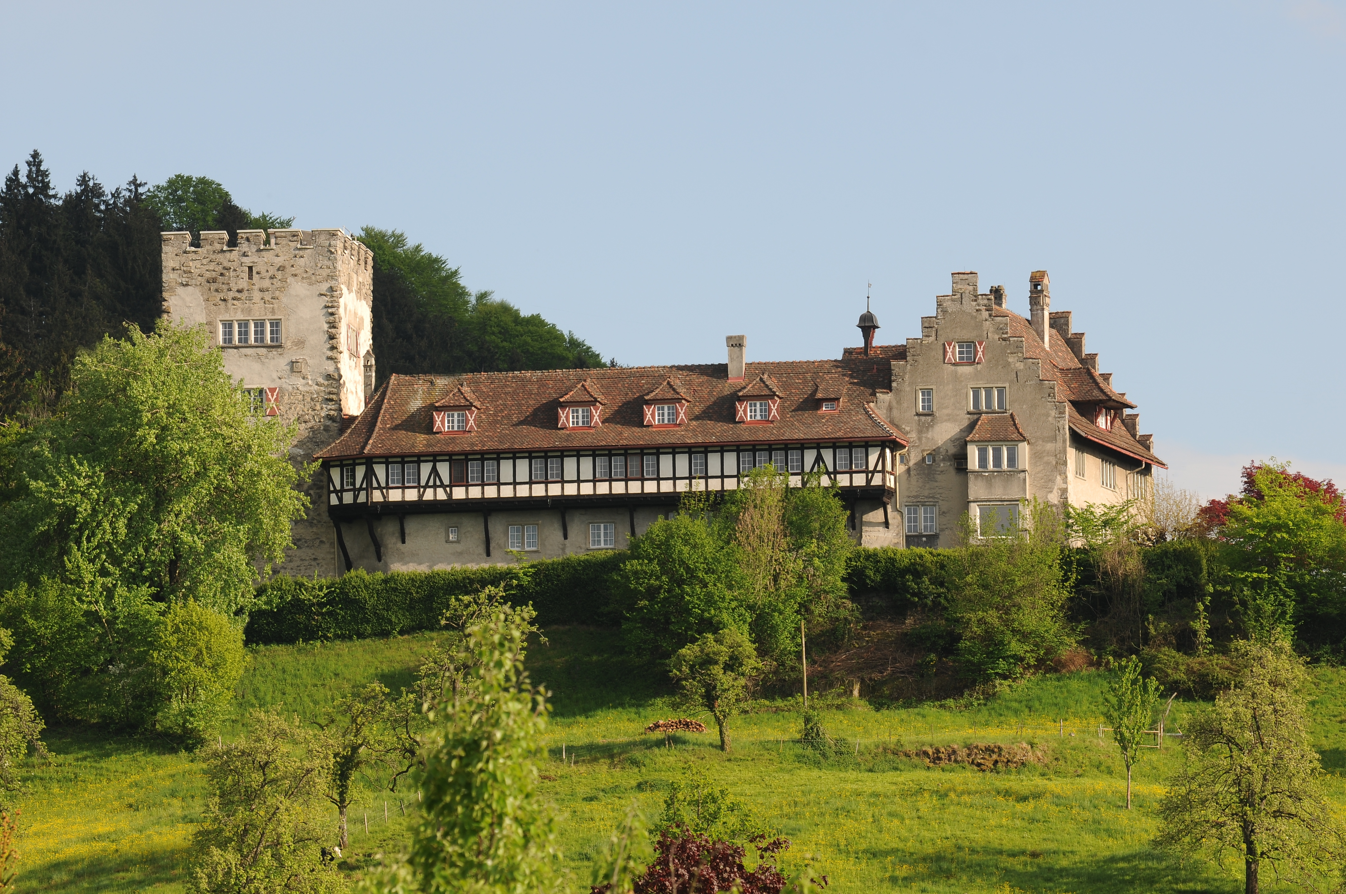 Schloss Wolfurt