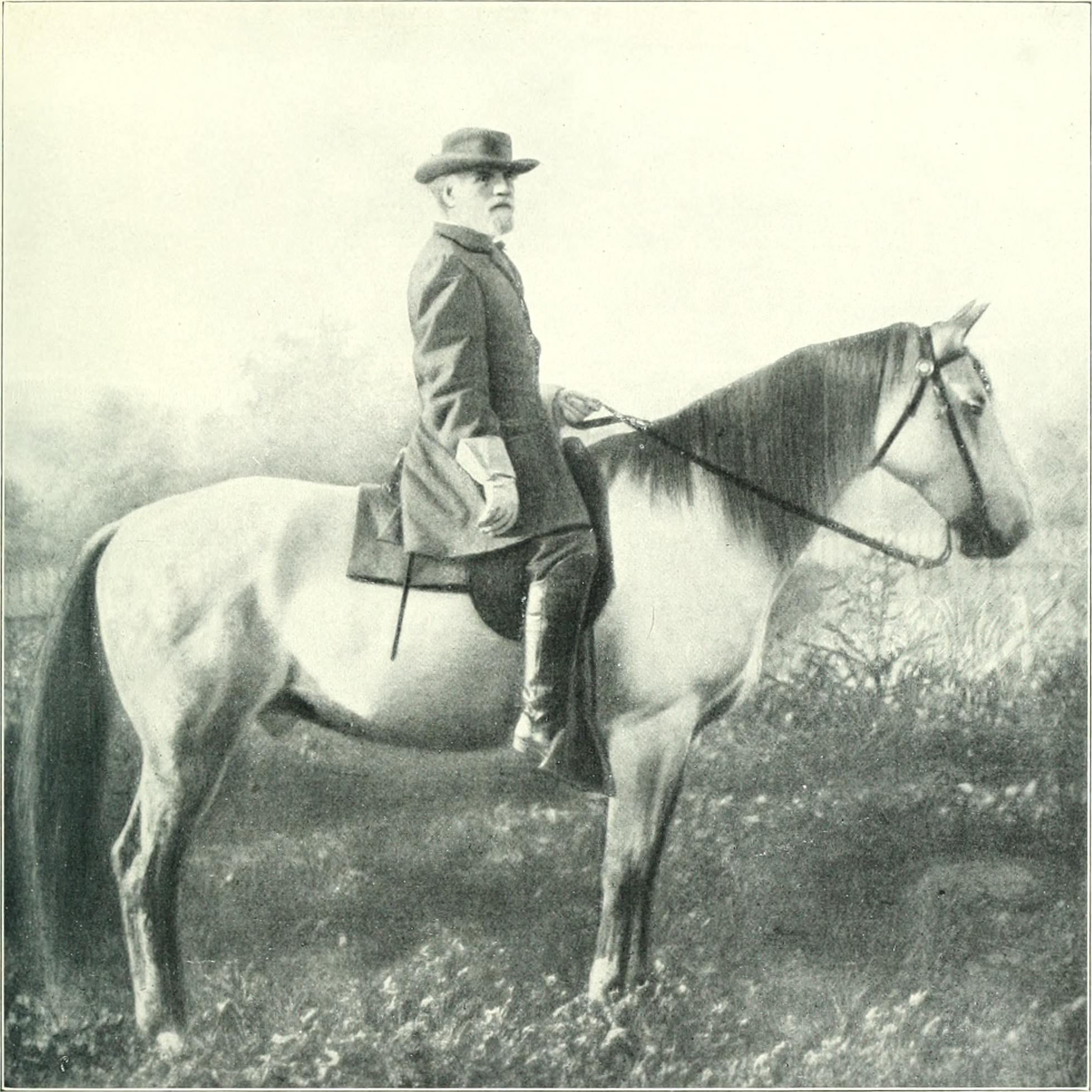 Traveller (horse) - Wikipedia