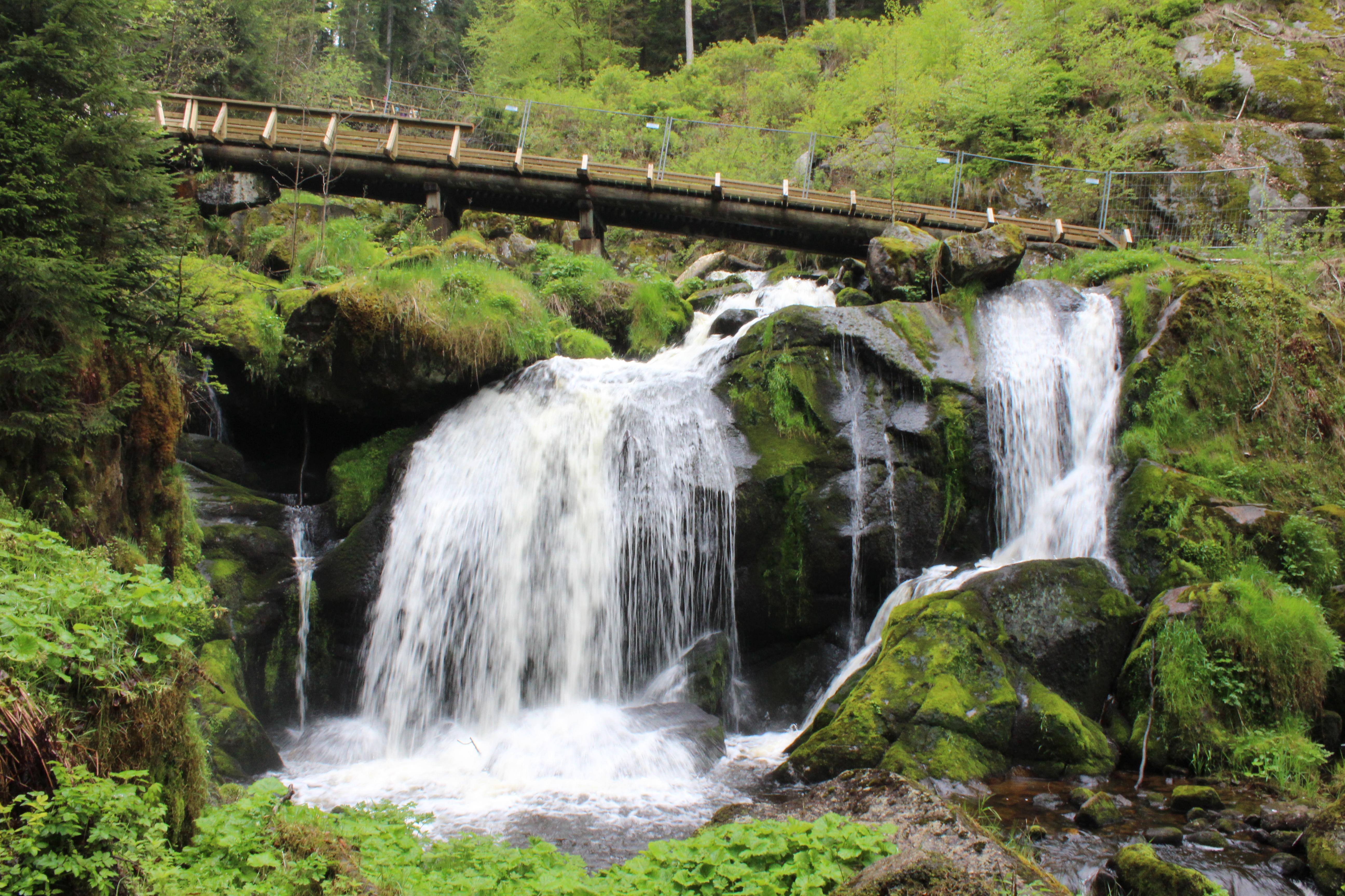 Triberg Waterfall 2.JPG