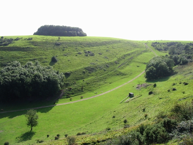 View across valley towards Brockman's Bushes - geograph.org.uk - 975321