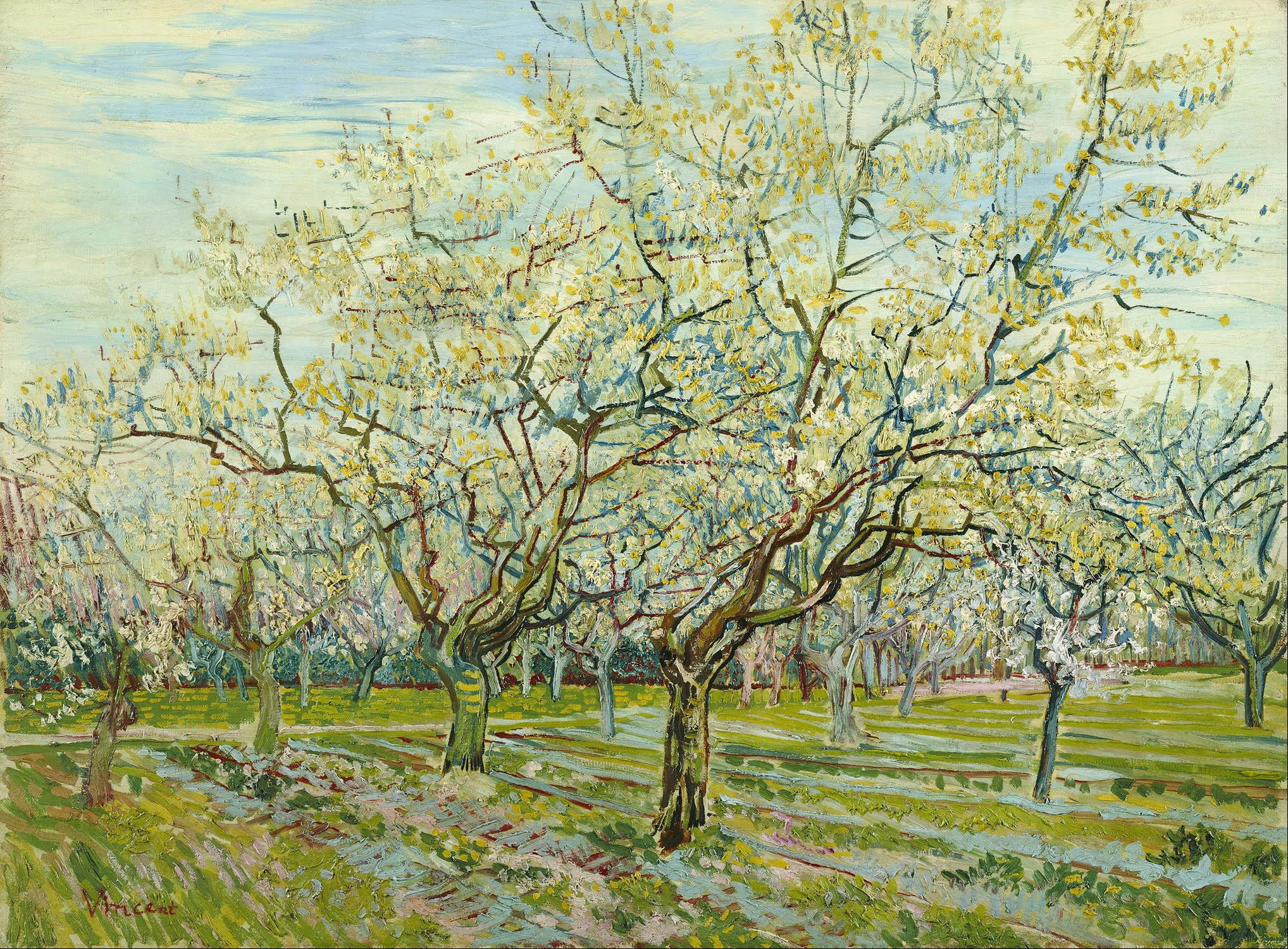 File vincent van gogh the white orchard google art for Van gogh paintings locations