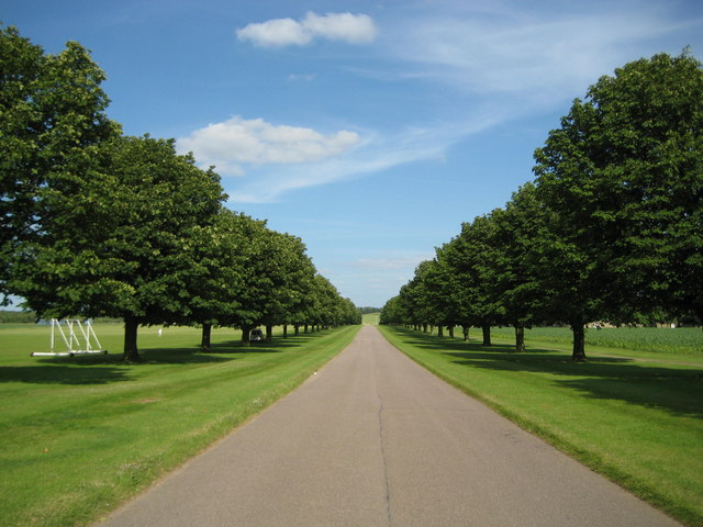 Wrest Park, The access driveway - geograph.org.uk - 871679