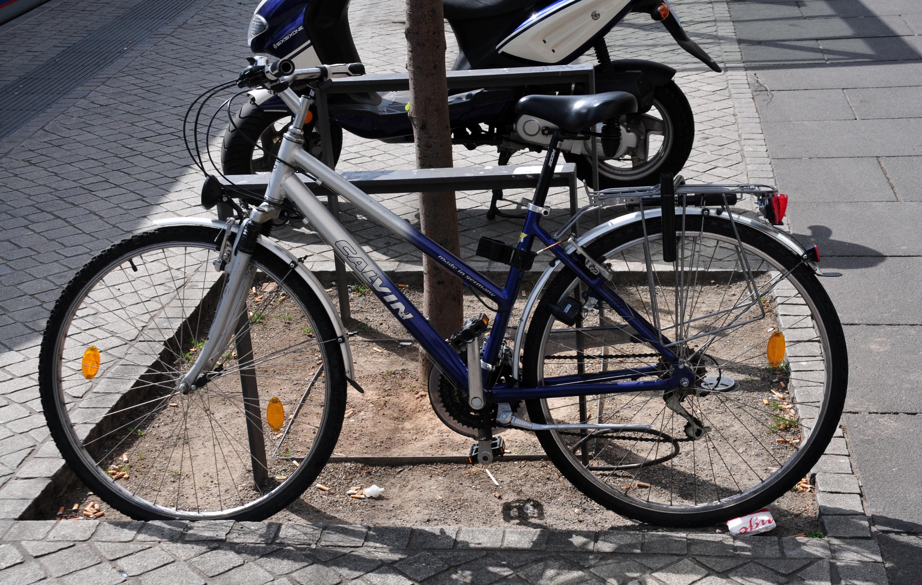 12-06-09-fahrrad-by-ralfr-19.jpg