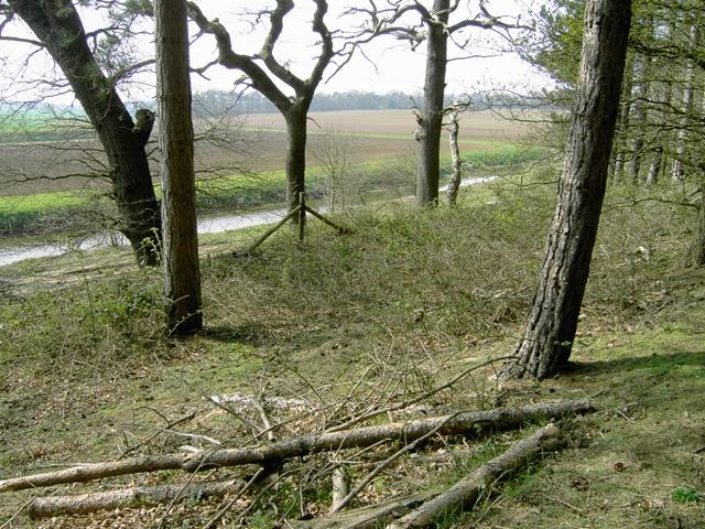 Across The John Bunyan Trail - geograph.org.uk - 400451