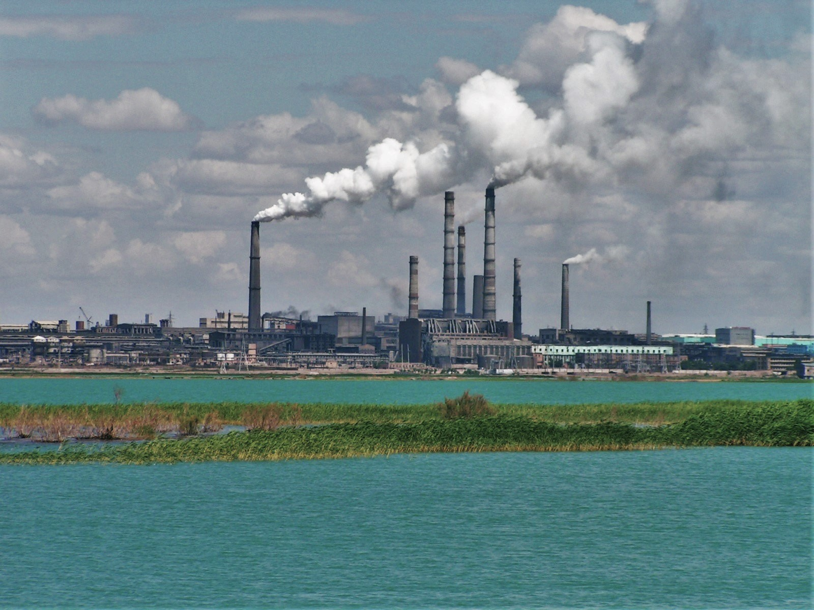 Экология казахстана картинки