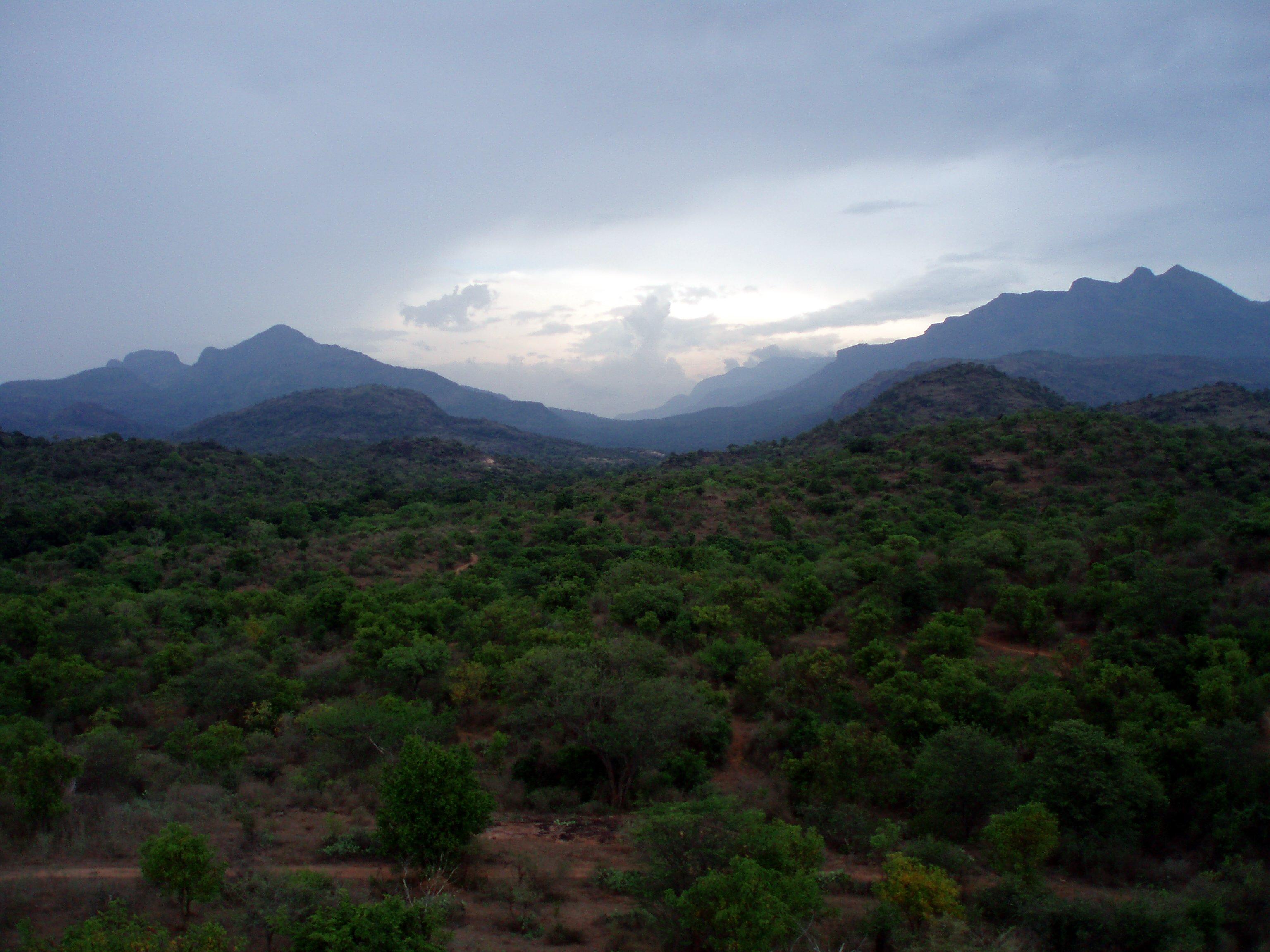Chinnar Wildlife Sanctuary - Wikipedia