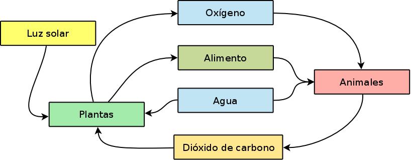 diagrama de ecosistema