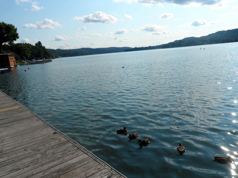 File:Ducks at the Lake.JPG